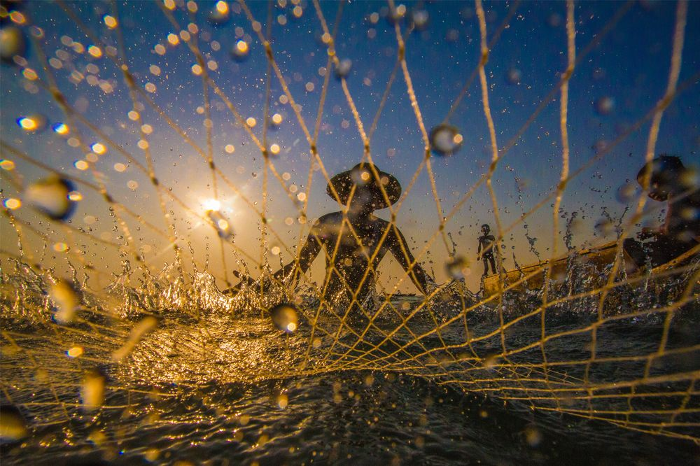Through The Net by Pyiet Oo Aung
